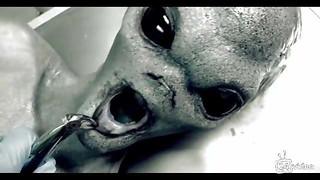 Porked alien