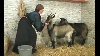 SR Grandson Finds Grannie Nastier Than Her Goats !