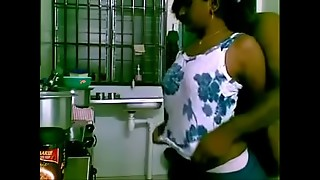 Watch maid porked by manager in the kitchen