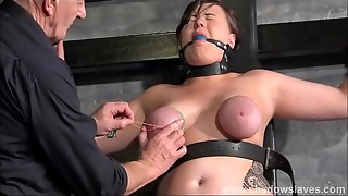 Strapped gimp Taylor Hearts orb restrain bondage and bouncy penalty of nips and fe